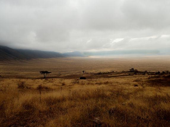 Pohled na kráter Ngorongoro